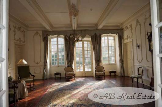 luxuryChateausaleCarcassonneSouthFrance